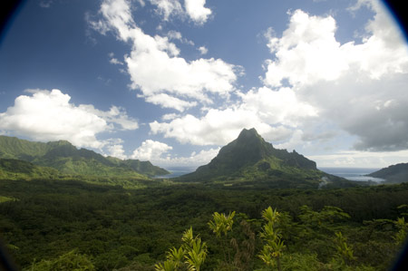 The South Pacific Yacht Charter Belvedere Lookout Point, Moorea