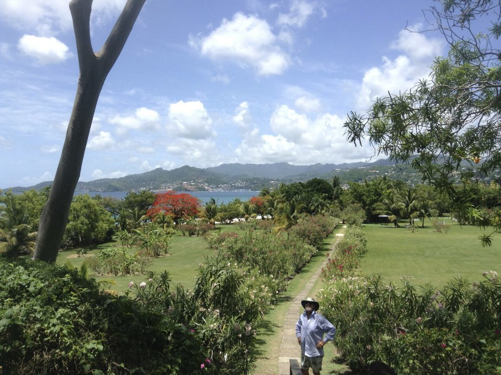 Grenada - lovely path to the beach at Grand Anse